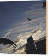 Gulls Fly Wood Print