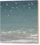 Gulls Flying Over The Ocean Wood Print