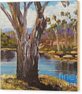 Gum Trees Of The Snowy River Wood Print