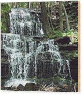Gun Brook Falls Wood Print