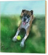 Gus The Rescue Dog Wood Print