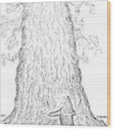 Guy Hugging A Giant Tree And Speaks To It Wood Print