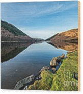 Gwydyr Forest Lake Wood Print by Adrian Evans