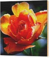 Gypsy Rose Wood Print