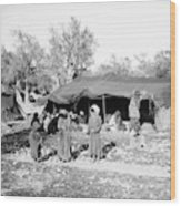 Gyspy Encampment, C1900 Wood Print