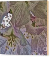 H Cherry Blossom Cont L Wood Print