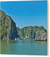 Ha Long Bay  Wood Print