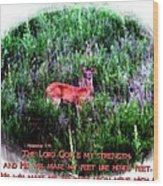 Habakkuk 3 19 Wood Print