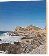 Hacienda Cerritos On The Pacific Ocean Wood Print