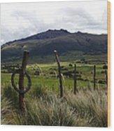 Hacienda El Porvenir Ranch View Wood Print