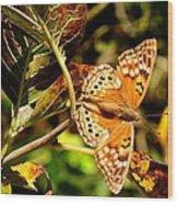 Hackberry Emperor Butterfly Wood Print
