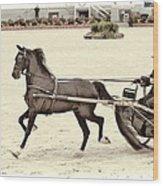 Hackney Pony Cart Wood Print