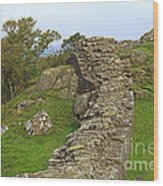 Hadrian's Wall Near Walltown Quarry Wood Print