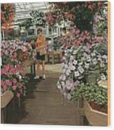 Haefner's Garden Center Impatiens Wood Print