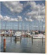 Hafen Barth Wood Print