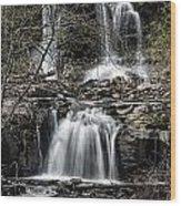 Haines Falls Wood Print
