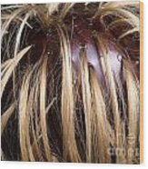 Hair Coloring Wood Print