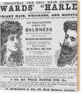 Hair Restorative, 1891 Wood Print