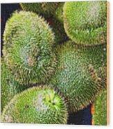 Hairy Peary Chayote Squash By Diana Sainz Wood Print