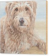 Hairy Sheepdog Watercolor Portrait Wood Print