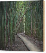 Haleakala National Park Wood Print