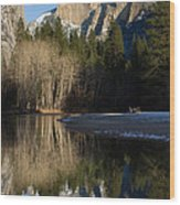Half Dome And Cottonwoods Reflected In Merced River  Wood Print