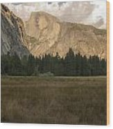 Half Dome And The Yosemite Valley Wood Print