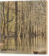 Hall Of Cypress Wood Print