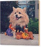 Halloween Dog Wood Print