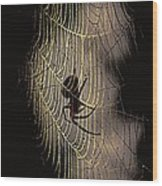Halloween - Spider Wood Print