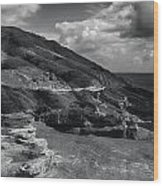Halona Blowhole Lookout- Oahu Hawaii Wood Print