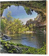 Hamilton Pool Wood Print by Lisa  Spencer