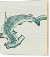 Hammerhead Shark Wood Print