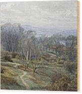 Hampstead Heath Looking Towards Harrow On The Hill Wood Print