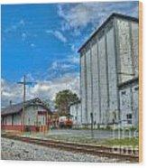 Hampstead Train Station And Grain Mill Wood Print