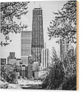 Hancock Building Through Trees Black And White Photo Wood Print