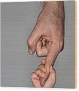 Hand In Hand Wood Print