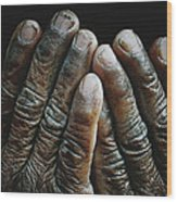 Hands Of Time 2 Wood Print