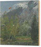 Hang Gliders At Chamonix, 2007 Oil On Canvas Wood Print