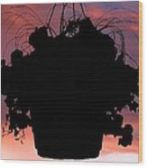 Hanging Basket Silhouette Wood Print