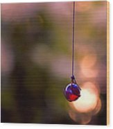 Hanging By A Thread Wood Print