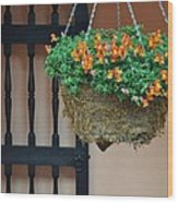 Hanging Flowers And Black Gate Wood Print