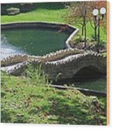 Hanging Garden In Indiana Wood Print