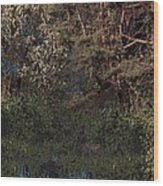 Hanging Garden In Moonlight Wood Print