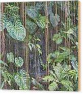 Hanging Gardens V5 Wood Print