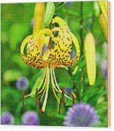 Hanging Lily Wood Print
