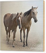 Hanging Out Together Wood Print by Betty LaRue
