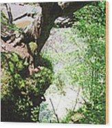 Hanging Tree Wood Print