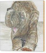 Happy Baby Elephant Wood Print