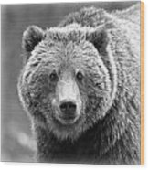 Happy Bear Wood Print